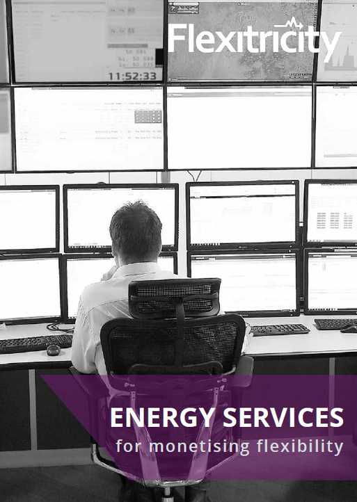 Energy Services for Monetizing Flexibility